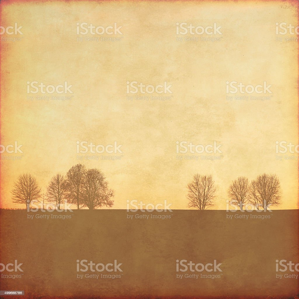Grunge image with trees. stock photo