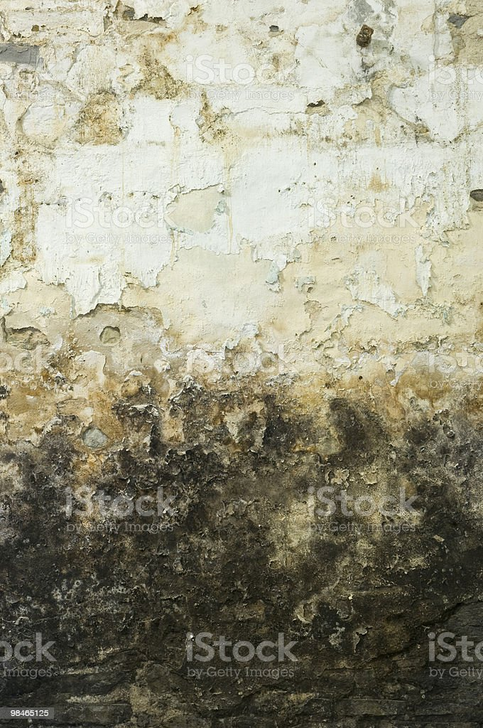 Grunge Mouldy Wall Background royalty-free stock photo