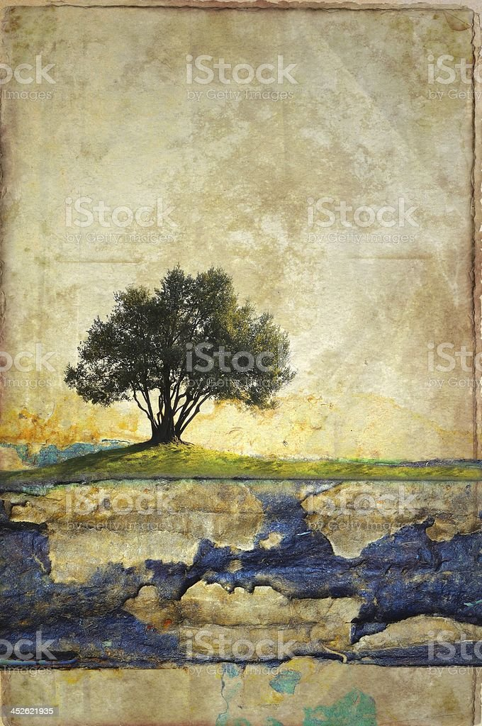 Grunge olive tree on damaged cardboard. Useful for background. stock photo