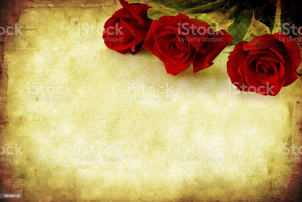 Grunge Red Roses stock photo