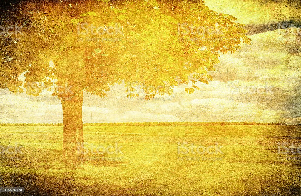 grunge rural background with space for text or image royalty-free stock photo