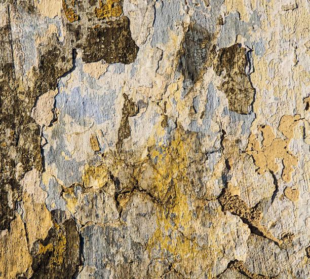 grunzwand aus nächster nähe - falsche malerei wände stock-fotos und bilder
