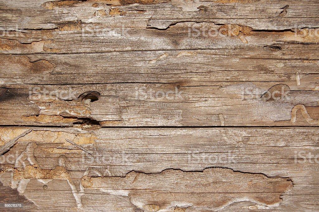 Grunge Holz Textur Lizenzfreies stock-foto