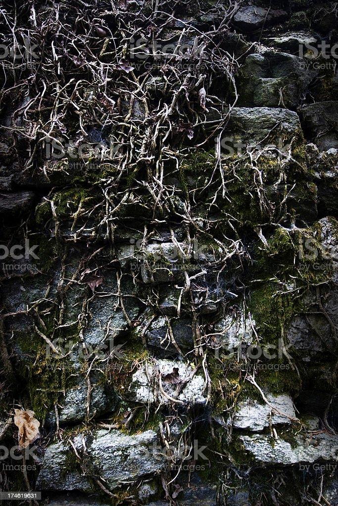 Grungy stonewall stock photo
