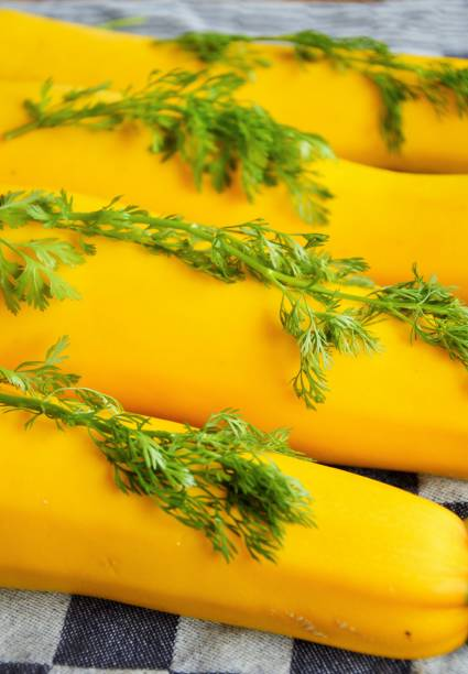 Gruop of yellow courgettes lying on a table covered with coriander leaves Yellow zucchini with cilantro leaves on a table freshly harvested from my allotment in Nijmegen the Netherlands werken stock pictures, royalty-free photos & images