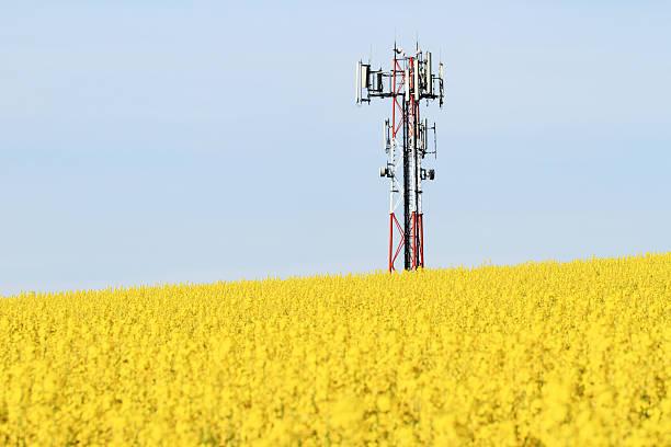 trasmettitore gsm su un campo - emissione radio televisiva foto e immagini stock