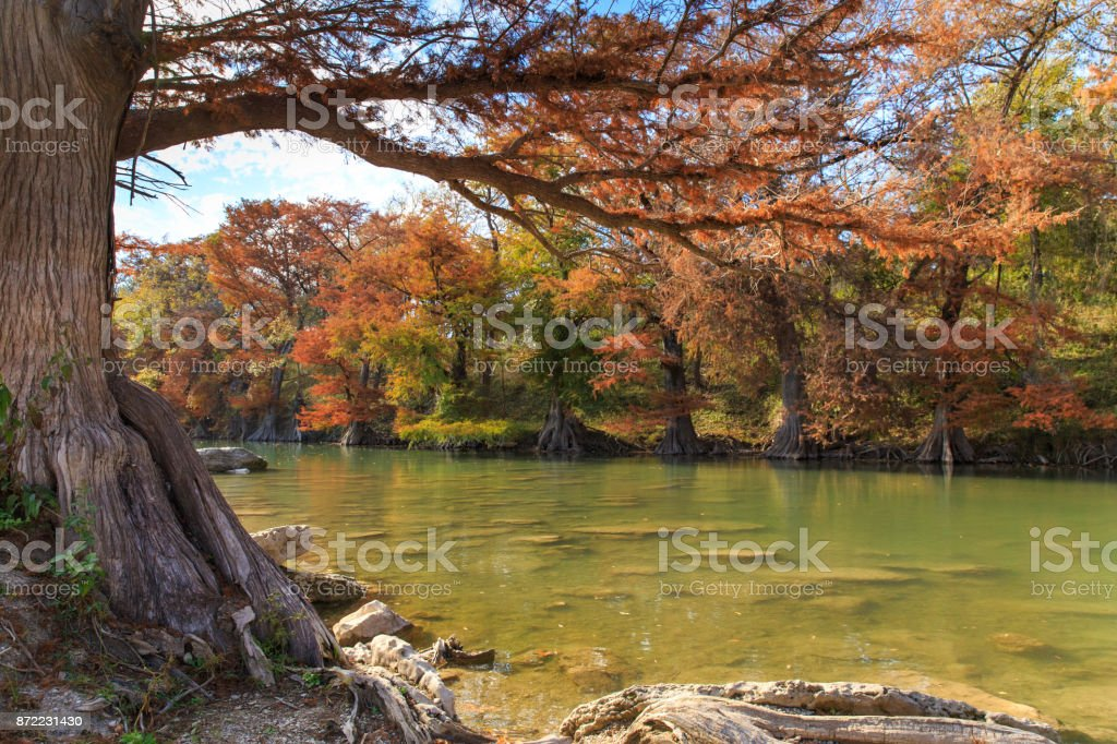 Guadalupe River State Park Fall Colors stock photo