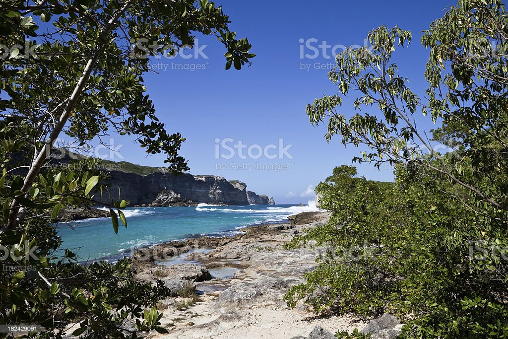 Guadeloupe Coast, Cliffs and Surf stock photo