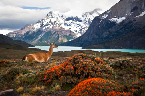This national park was designated a World Biosphere Reserve by UNESCO in 1978.
