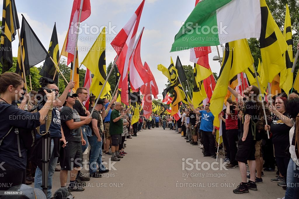 Guard Of Honor Of Flags Stock Photo & More Pictures of Activist - iStock