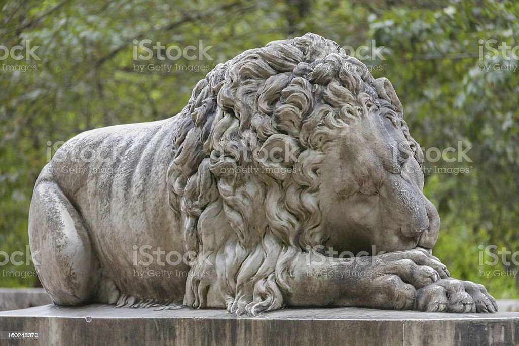 Guardian lion stock photo