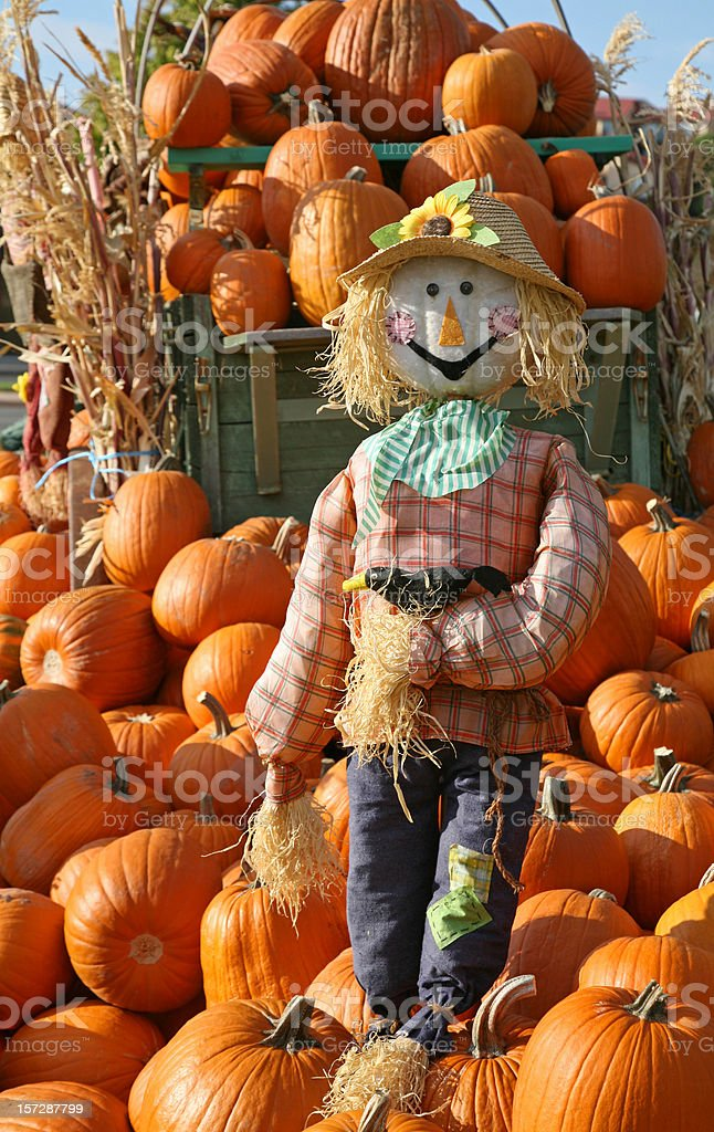 Guardian Of The Pumpkins royalty-free stock photo