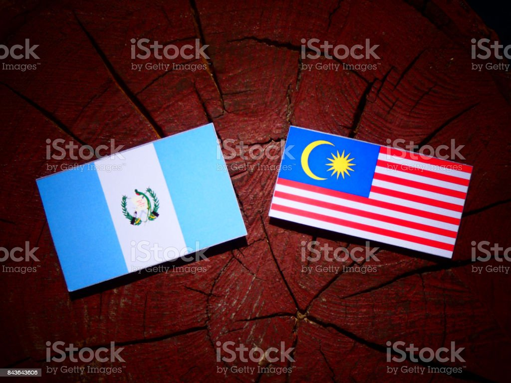 Guatemalan flag with Malaysian flag on a tree stump isolated stock photo