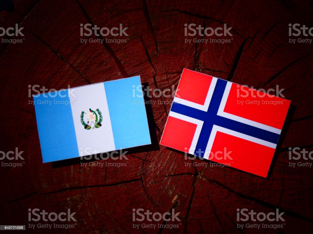 Guatemalan flag with Norwegian flag on a tree stump isolated stock photo