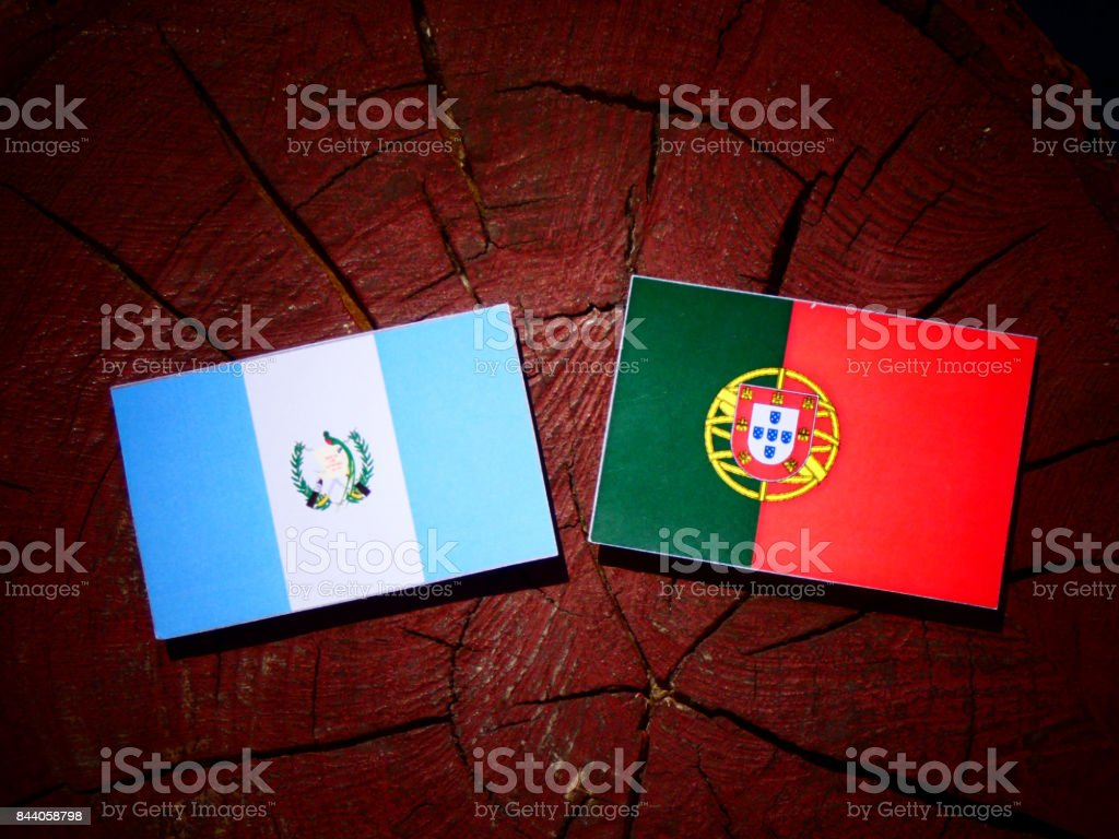 Guatemalan flag with Portuguese flag on a tree stump isolated stock photo