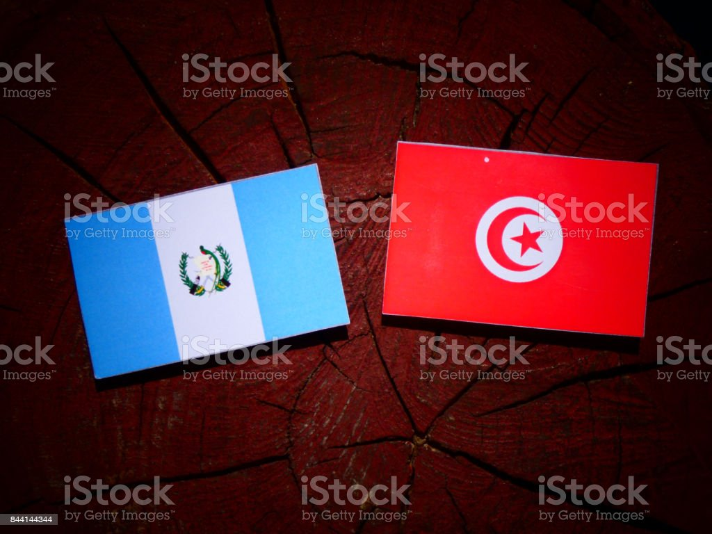 Guatemalan flag with Tunisian flag on a tree stump isolated stock photo