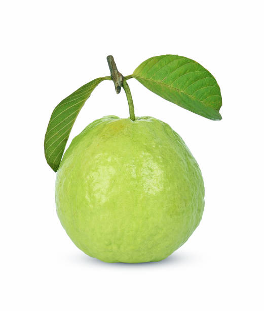 Guava fruit isolated on white background Guava fruit isolated on white background. guava stock pictures, royalty-free photos & images