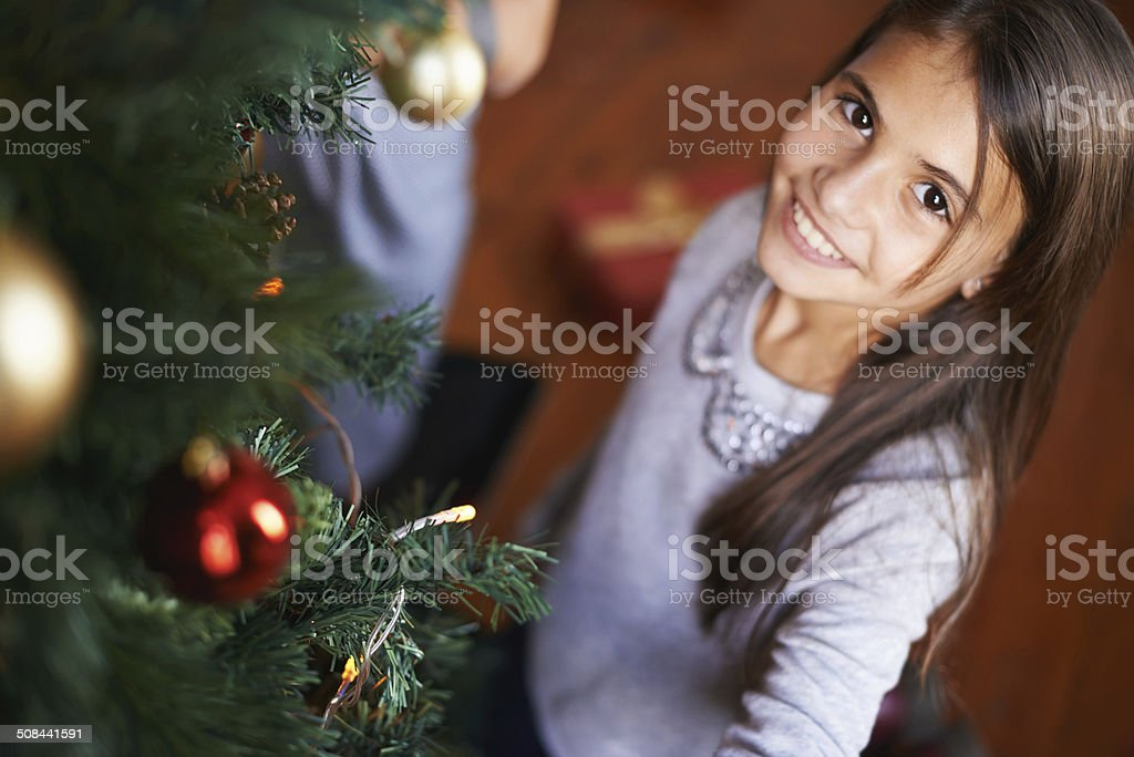 Guess who did the decorating this year? royalty-free stock photo