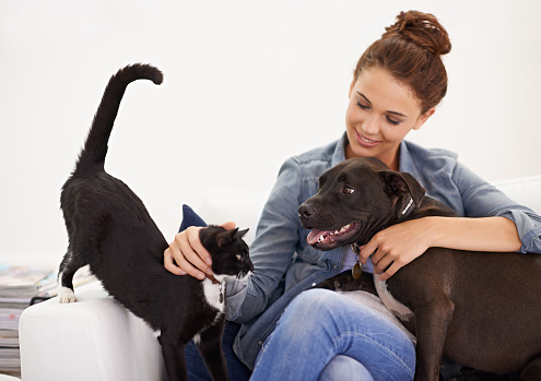 Shot of a beautiful young woman relaxing on the couch with her dog and cathttp://195.154.178.81/DATA/i_collage/pi/shoots/783489.jpg