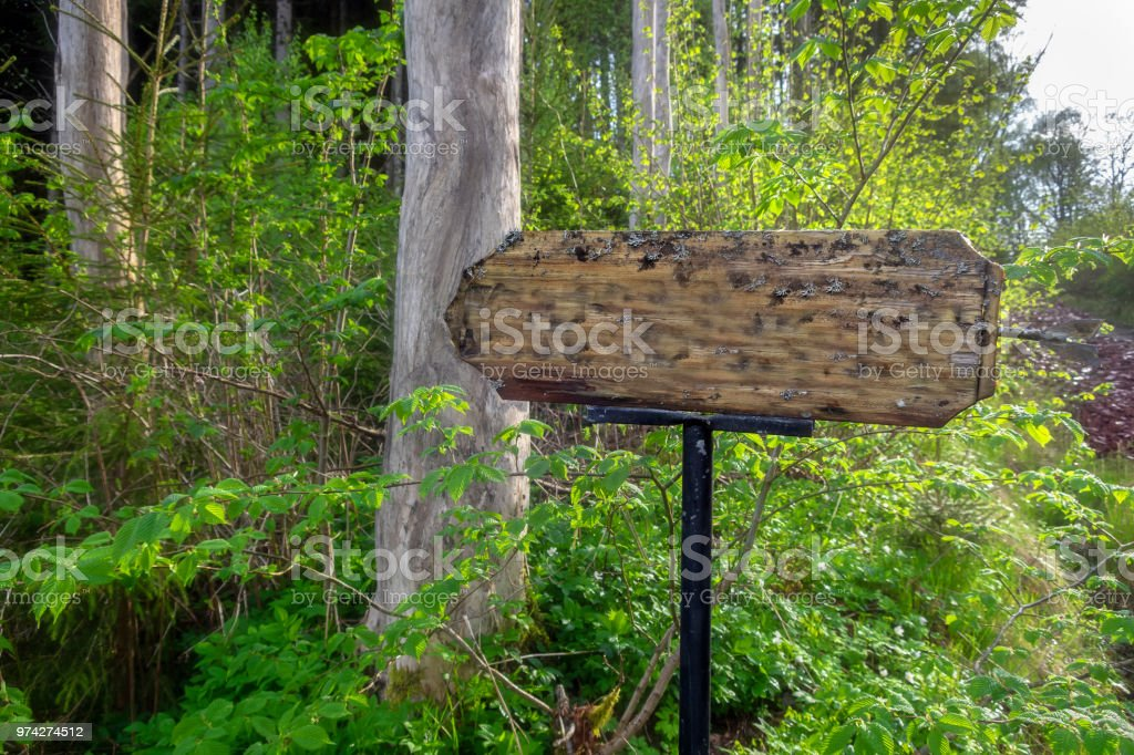 Guidepost in wildlife preserve stock photo