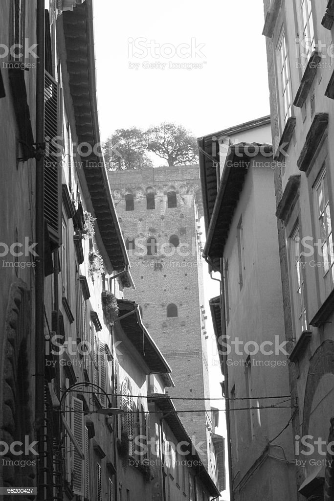 Torre dei Guinigi royalty-free stock photo