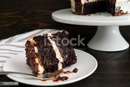 istock Guinness Chocolate Cake with Irish Buttercream 1200202269