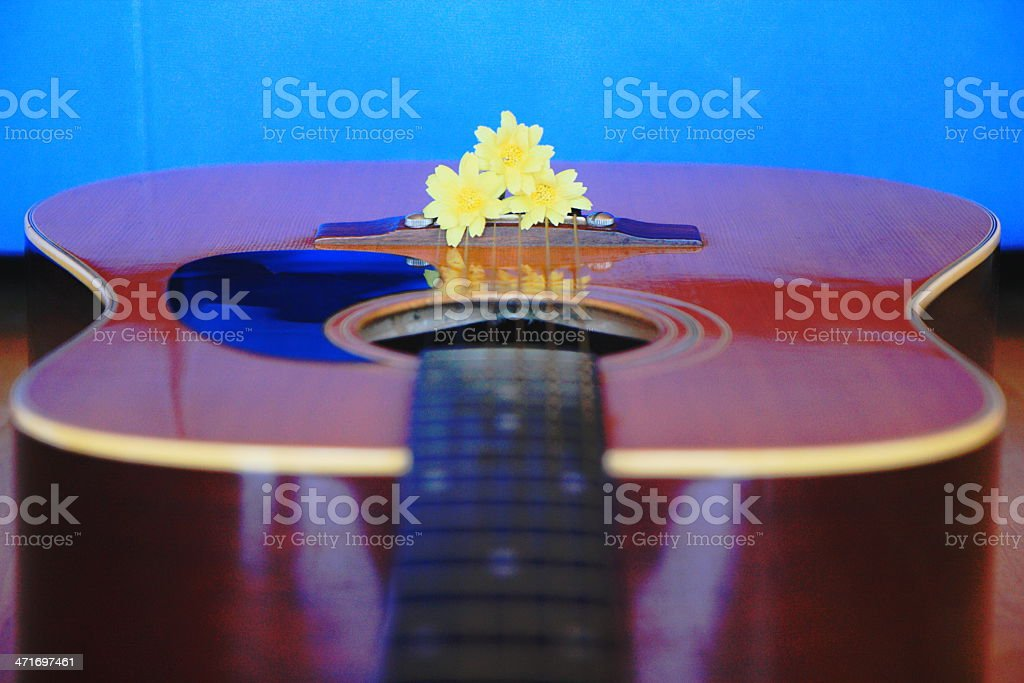 Guitar and flower royalty-free stock photo