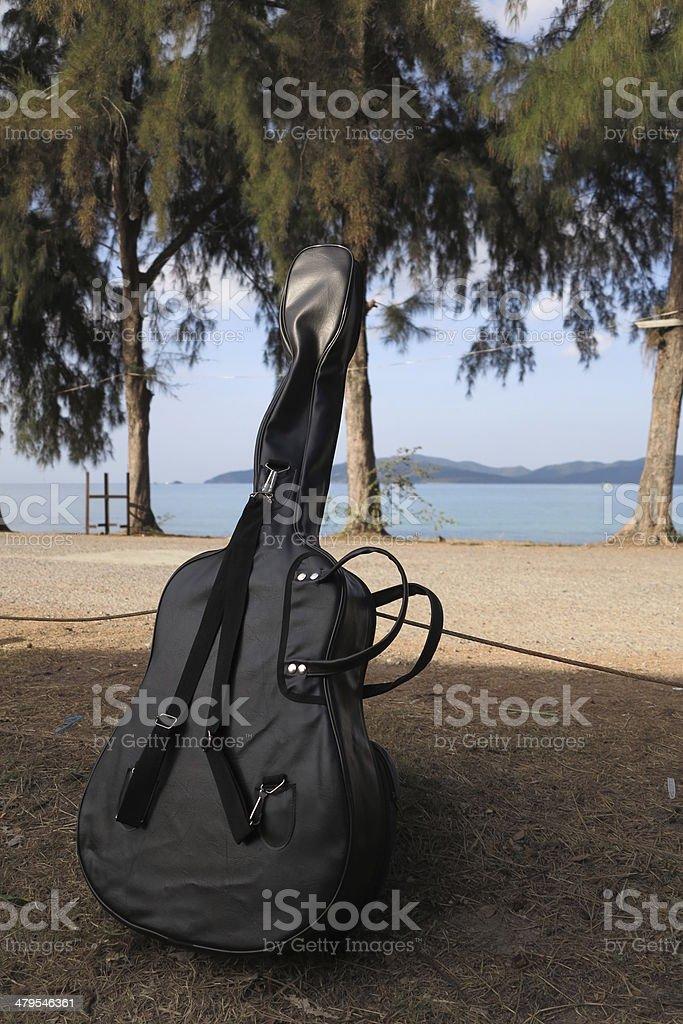 Guitar Bag stock photo