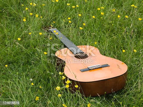 Acoustic guitar in a field.