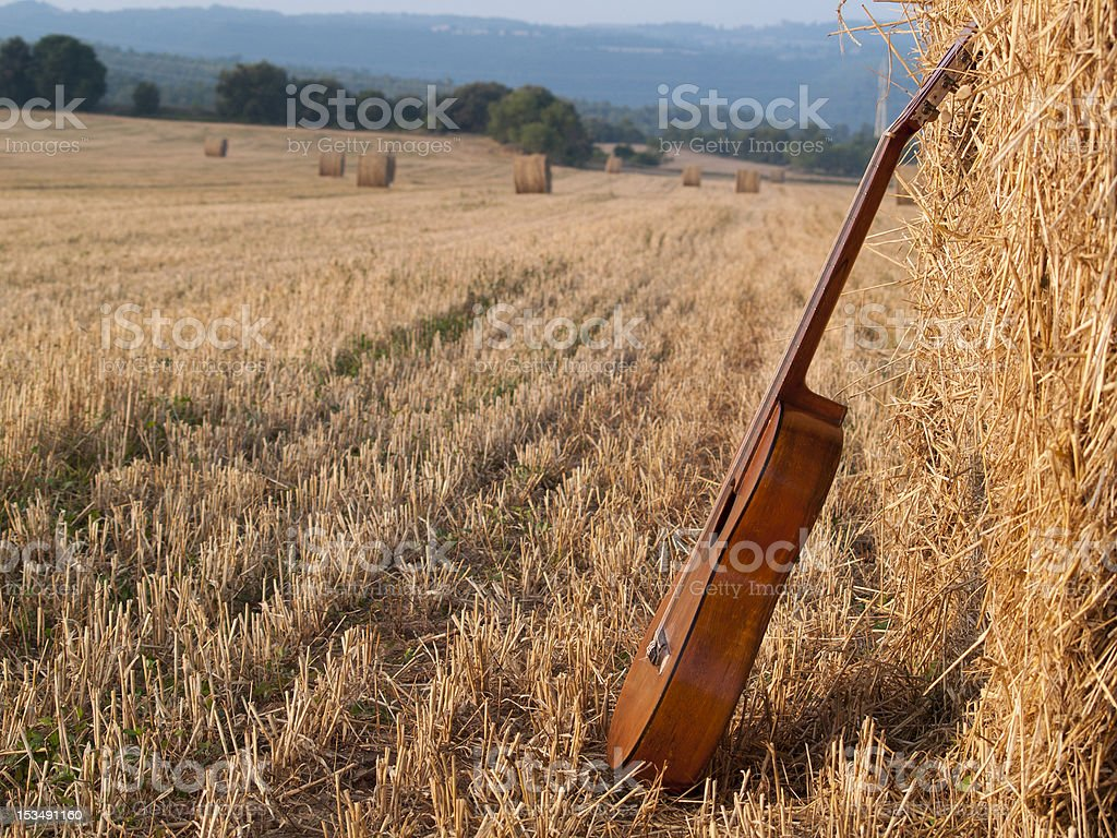Guitarra en un campo - foto de stock