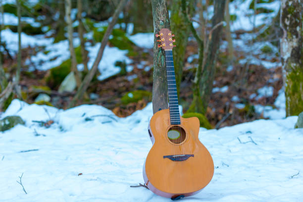 Guitar Leaning on a Tree in the Snowy Fores stock photo