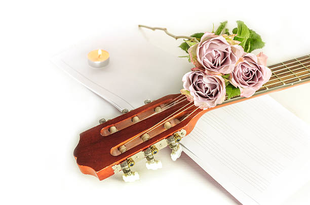 Guitar neck with roses and sheet music, on white A photo of a guitar neck with tender pink roses and blurred sheet music, on a white background with copyspace serenading stock pictures, royalty-free photos & images