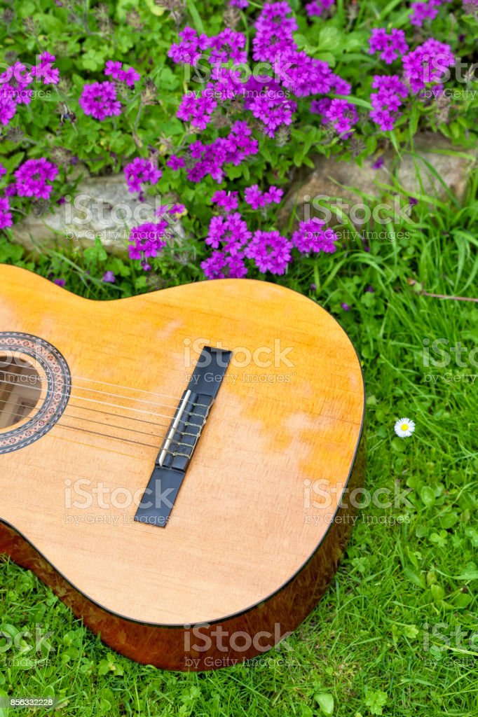 Guitar on the grass. stock photo