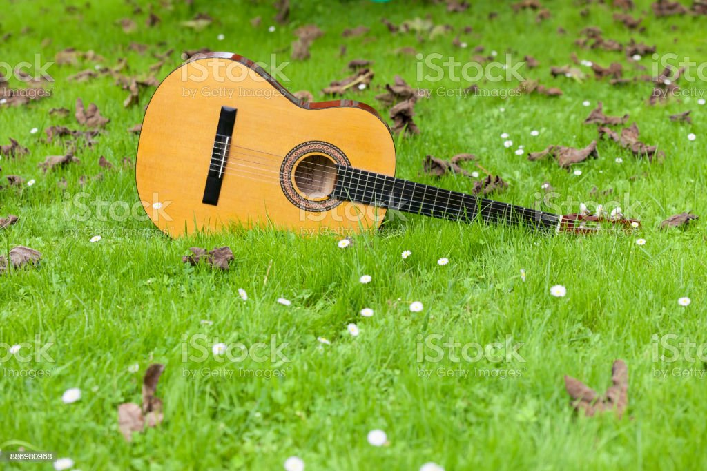 Guitar on the grass stock photo