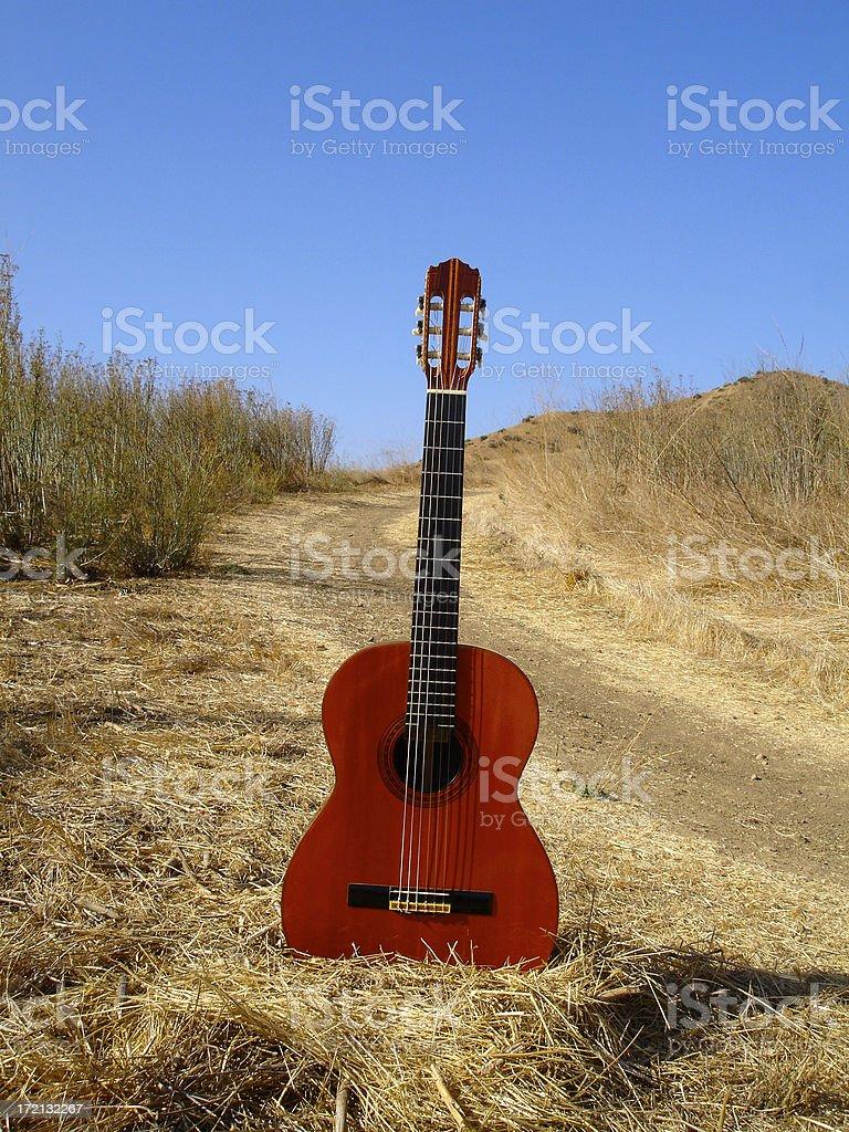 Guitar Series royalty-free stock photo