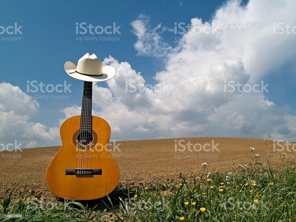 Guitarra en un campo con perfil en'U