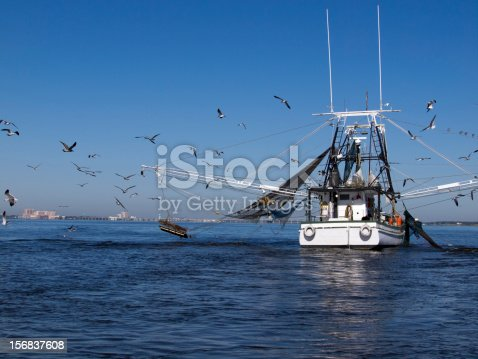 Shrimp boat fishing in the Gulf of Mexico