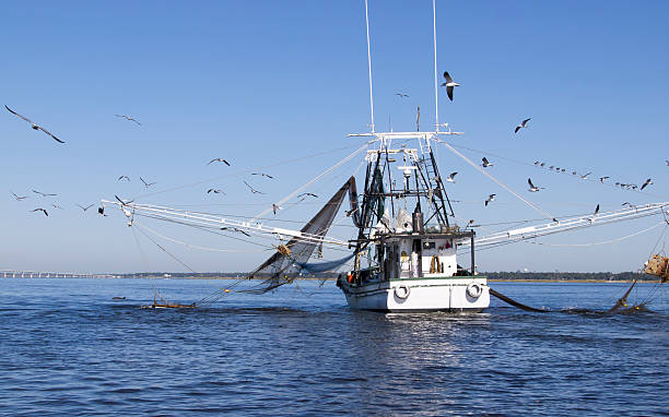 Gulf Coast Shrimping Boat in Biloxi stock photo