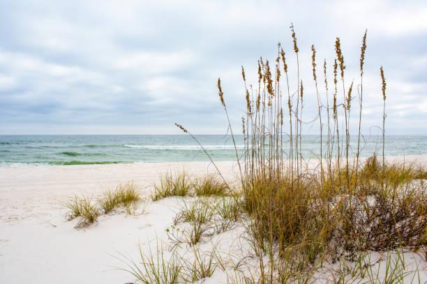 Gulf Islands National Seashore stock photo