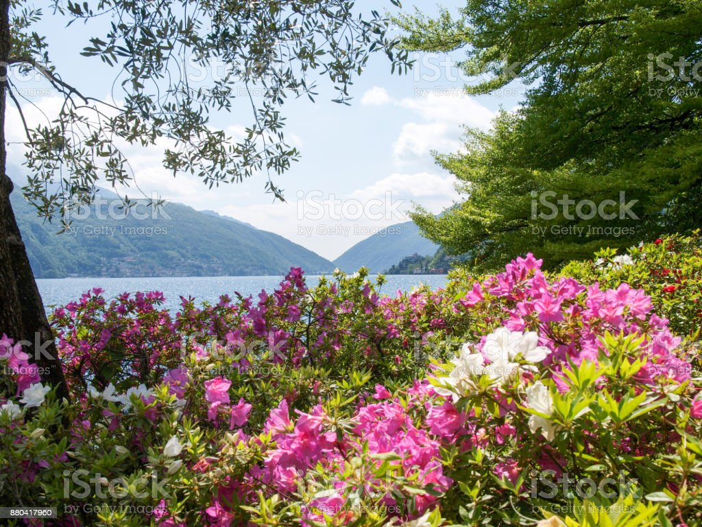 Gulf of Lugano from ciani park stock photo