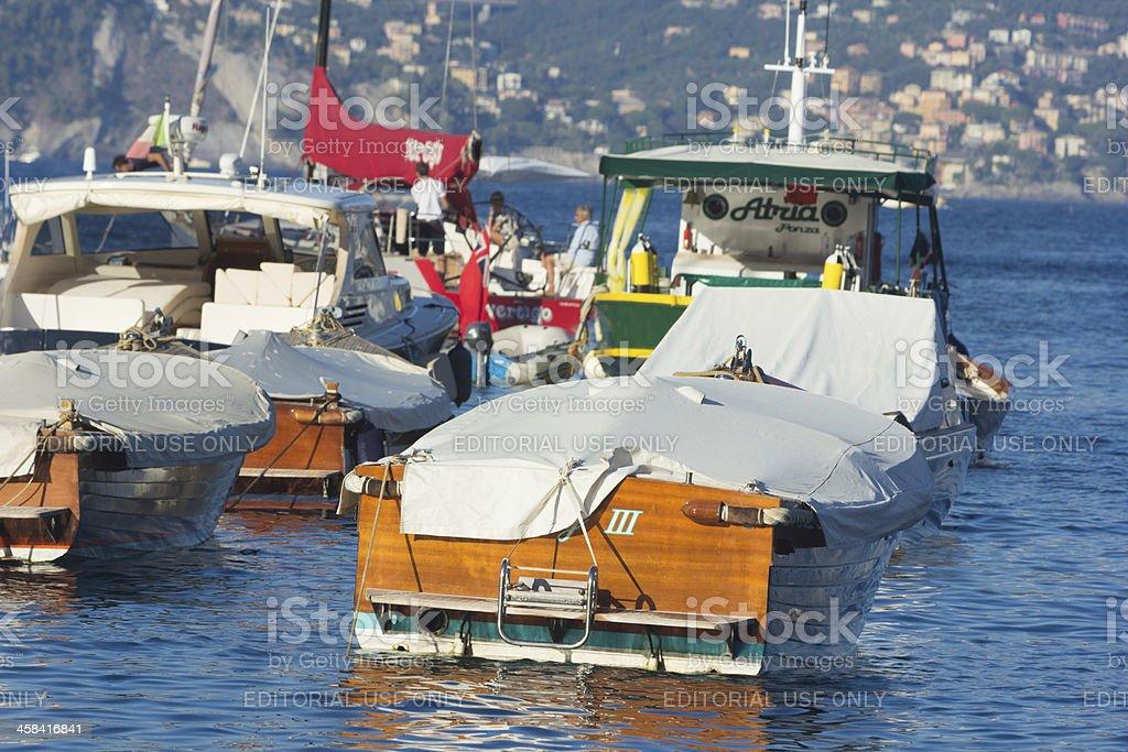 Gulf of Tigullio on the Riviera di Levante, Italy royalty-free stock photo