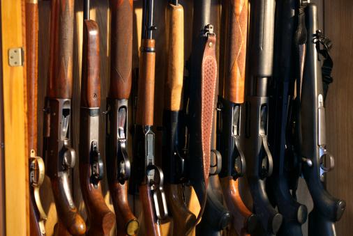 Ten rifles and shotguns lined up in a hunter's gun case.
