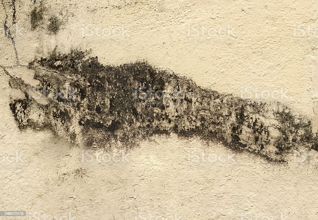 gunge stain on concrete wall royalty-free stock photo