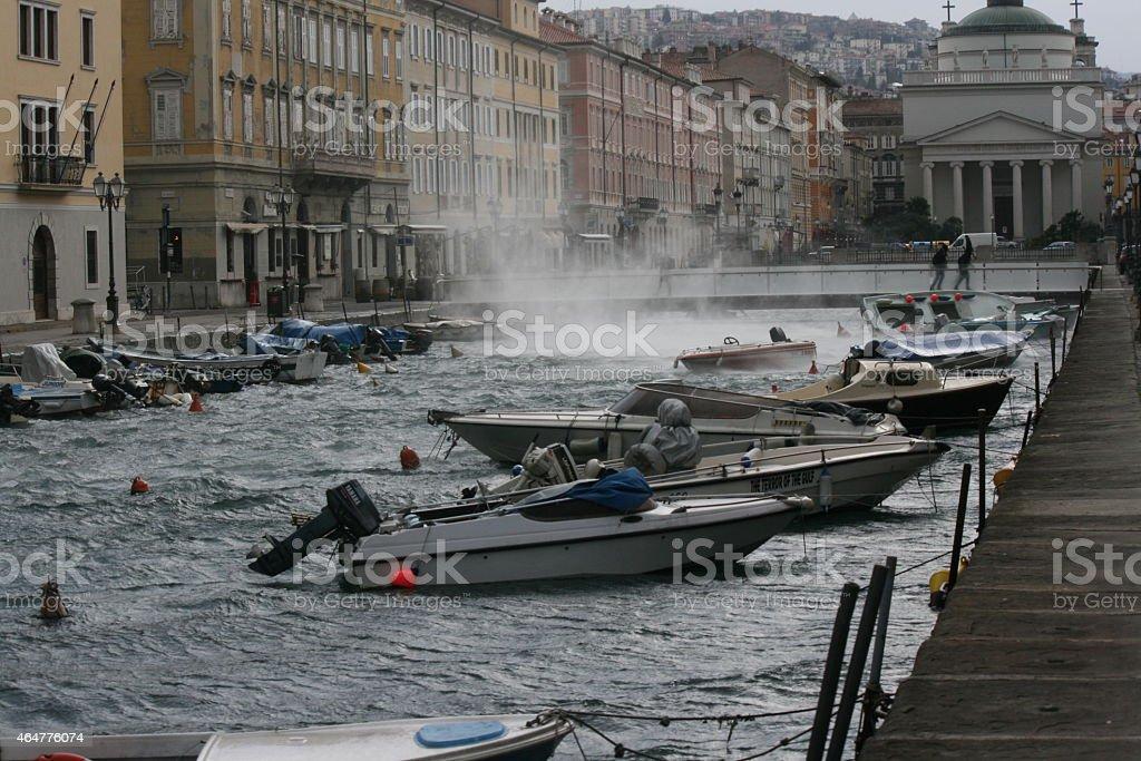 Gust of Bora in Ponterosso stock photo
