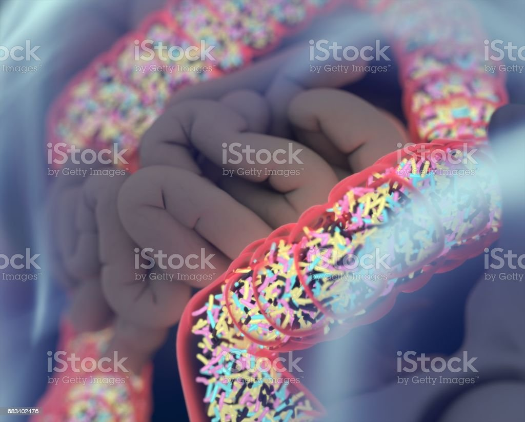 Gut bacteria, microbiome. Bacteria inside the large intestine, concept, representation. 3D illustration. stock photo