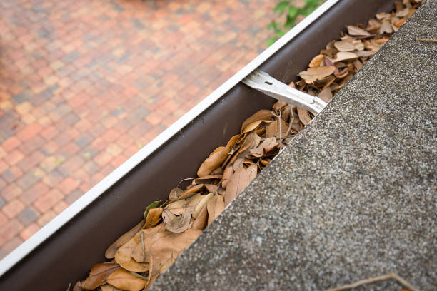 gutter clogged with oak leaves stock photo