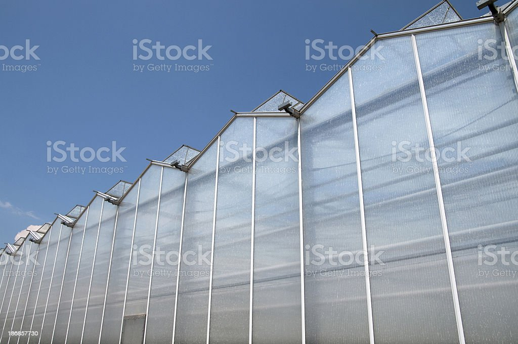 Gutter Connected Greenhouses royalty-free stock photo