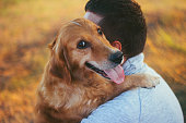 Guy and his dog, golden retriever, nature,hug,autumn,spring,summer