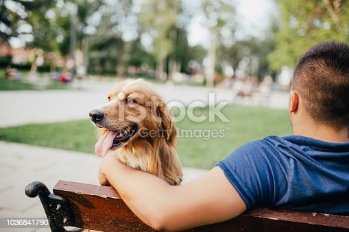 The guy and his dog are sitting in a park on the bench and enjoying a sunny day