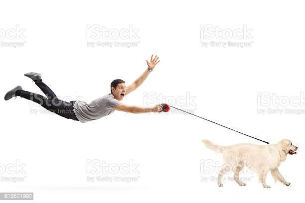 Guy being pulled by his dog picture id613521992?b=1&k=6&m=613521992&s=612x612&h=6y864aglliawdndi4 v9og6b9xepfin2ysokmm9vlnm=